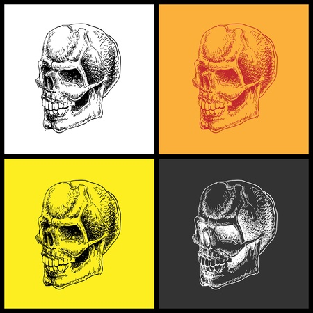 Set of doodle skulls. Hand drawn. Vector element for your design. Vector