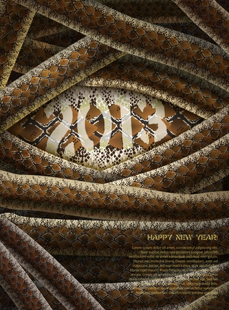 braun: Abstract background with 2013 inscription and snakes