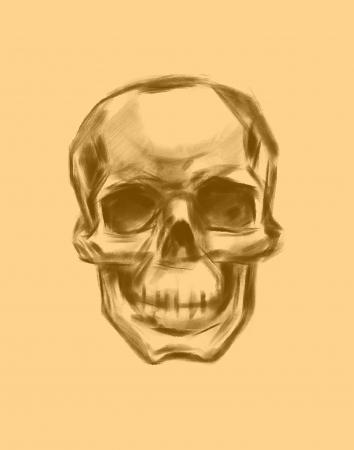 damnation: Skull  Hand drawn  Vector