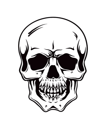 Cartoon Vector Skull . hand drawn Vector