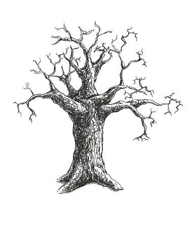 Tree vector illustration design. eps8