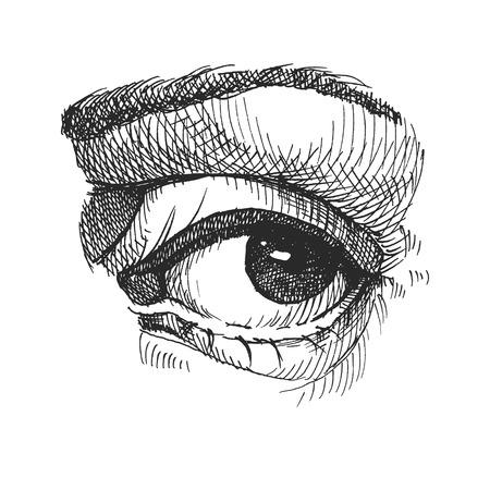 Eye. Realistic vector illustration. Hand drawn. Eps8