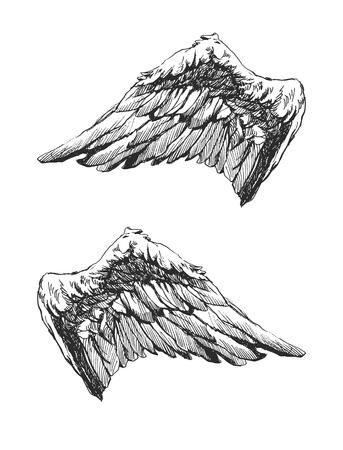 手描き下ろし天使の翼ベクトル eps 8  イラスト・ベクター素材