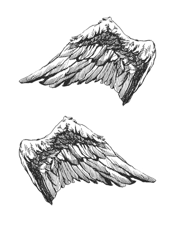 Hand drawn angel wings vector eps 8 Vector
