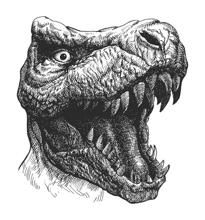 t rex: Tyrannosaurus Dinosaur . Hand drawn.