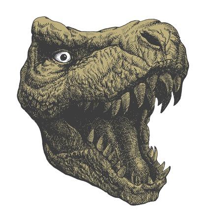 Dinosaurio Tyrannosaurus. Dibujado a mano.