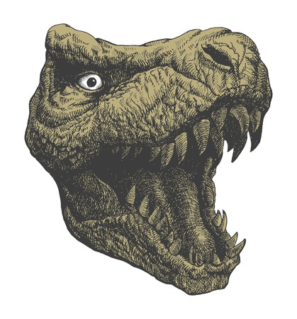 Tyrannosaurus Dinosaur . Hand drawn.  Vector