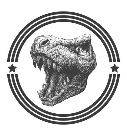 t rex: Tyrannosaurus Dinosaur . Hand drawn. Illustration