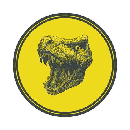 t rex: Tyrannosaurus Dinosaur   Hand drawn