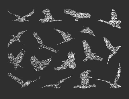 free clip art: collection of birds. vector eps8