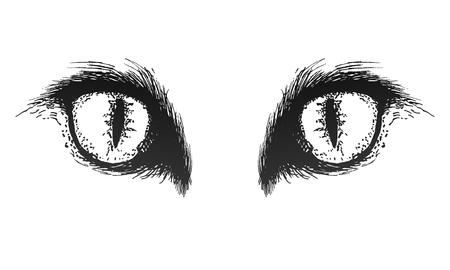 Hand drawn cat eyes. Vector eps 10
