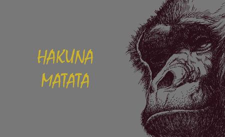 mandrill: Ape testa in bianco e nero. Illustrazione di vettore con Hakuna Matata iscrizione.