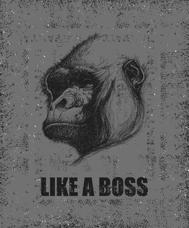apes: Monkey Face With Like A Boss Inscription Hand drawn illustration.