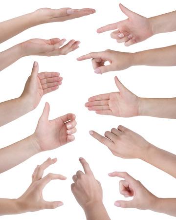 manos levantadas: Collage de once manos de la mujer aislada en blanco