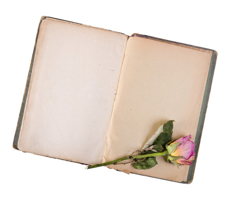 love notes: Dry rose and old book isolated on white Stock Photo