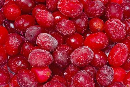 arandanos rojos: Ar�ndanos congelados Foto de archivo