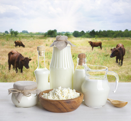 milk containers: Milk on wooden table with cows on the background