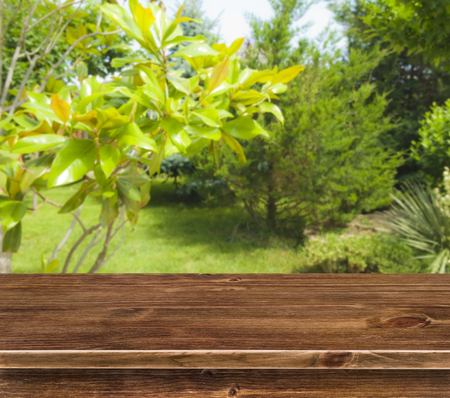Table surface over summer greenery background