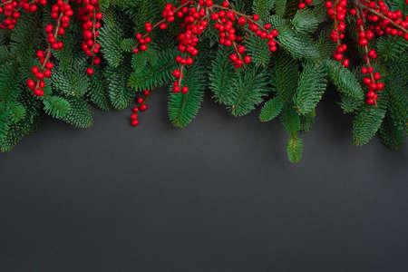 Fir tree branches with red berry twigs on dark background Standard-Bild