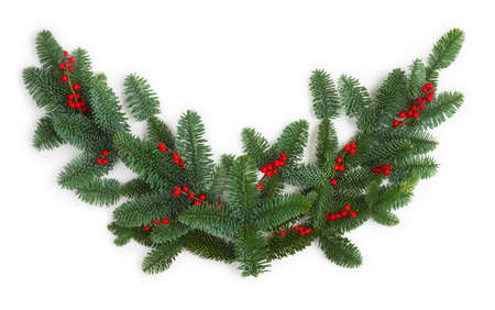 Fir branches object with red berries isolated on white background Standard-Bild