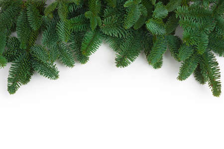 Green natural fir tree branches garland isolated on white background Standard-Bild