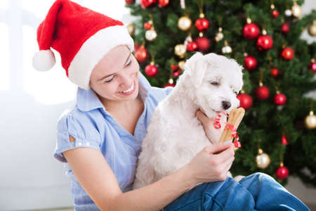 people: Young beautiful woman gives present bone to her dog for christmas holiday Stock Photo