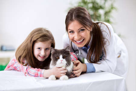 Kid with pet cat at the veterinary doctor Archivio Fotografico