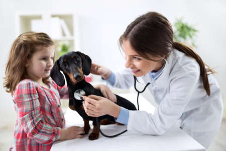 Niña con su mascota en el médico veterinario