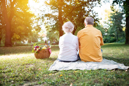 Happy and lovely senior couple enjoying a picnic in the park Stock Photo