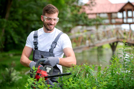 Bush trimming with electrically powered chain saw, concept of shrub trimming