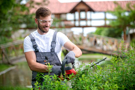 Electrically powered chain saw in hands of an experienced gardening worker, gardening concept