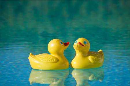 duckie: Yellow red rubber toy duckie in sunny blue swimming pool Stock Photo