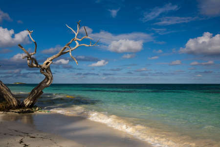 indies: Beach of Antigua & Barbuda West Indies