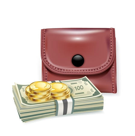 leather wallet with money and coins isolated Stock Vector - 20464014