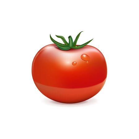 salat: single tomato isolated on white background