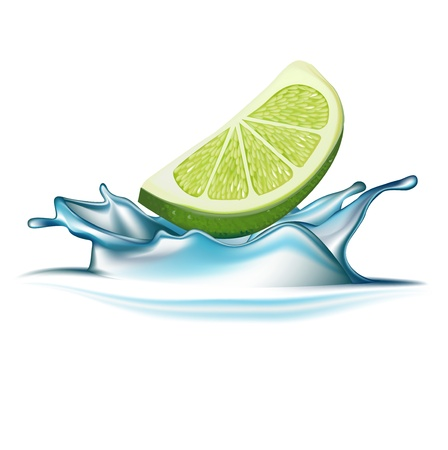 lime falling in water splash isolated on white Stock Vector - 20464027