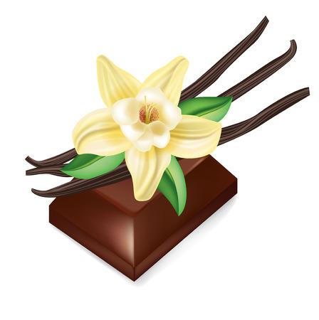 flor de vainilla: pieza de chocolate y flor de vainilla aislados en blanco