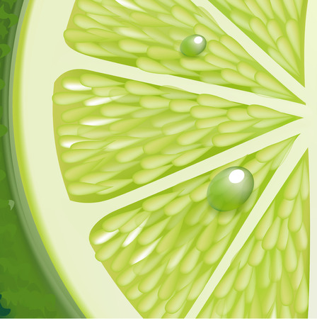 detailed view: lime texture detailed view with drops vector illustration