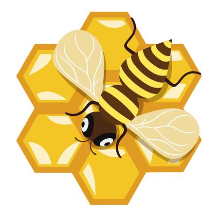 honey bee and honey comb flat design icon