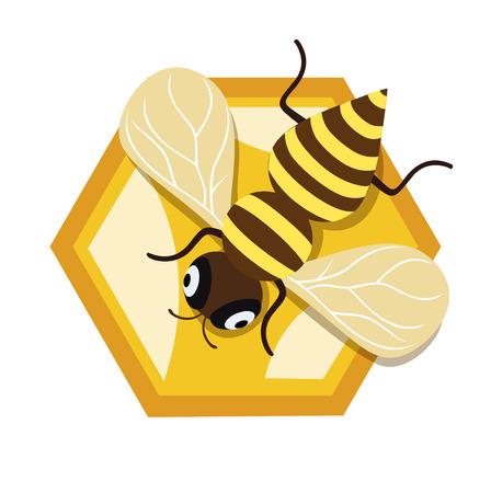 honey bee and single honey comb unit flat design icon