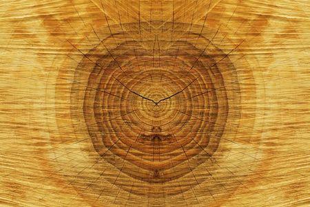 wood texture closeup Stock Photo - 408896