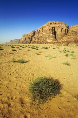 the wadi run desert photo