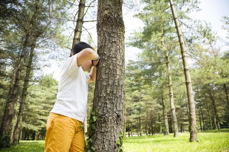 only boys: Young boy playing hide and seek, leaning against tree in park. Stock Photo