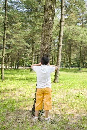italian ethnicity: Young boy playing hide and seek, leaning against tree in park. Stock Photo