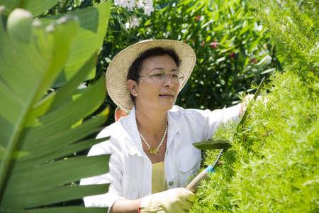 Portrait of senior Italian woman gardening Stock Photo - 3434638