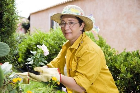 Portrait of senior Italian woman planting flowers in garden, looking at camera Stock Photo - 3434636