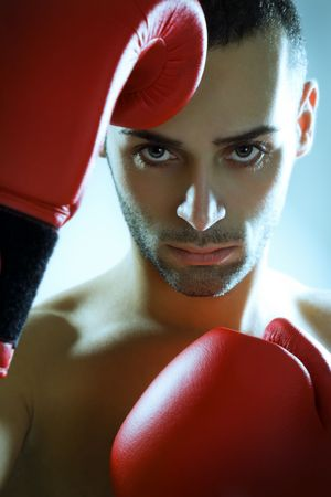 boxer in red gloves looking at camera photo
