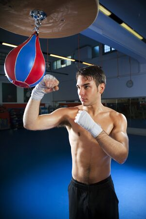 young adult man hitting speed bag in gym. Copy space photo