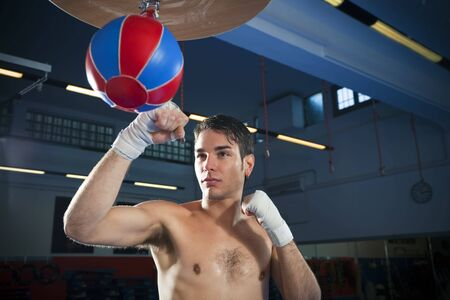 bare waist: young adult man hitting speed bag in gym. Copy space Stock Photo