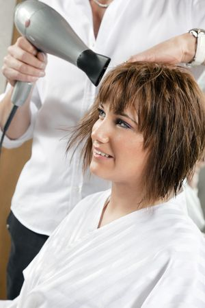 cropped view of hairstylist drying woman�s hair. Side view Stock Photo - 4563068